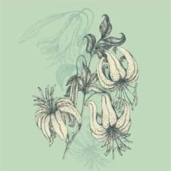 Misty Lillie Vintage Logo
