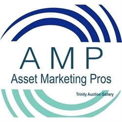 Trinity Auction Gallery Logo