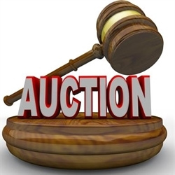 Ron And Ray Tosch Auction Service