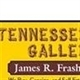 Tennessee Auction Gallery LLC Logo