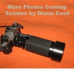 Estates & Auctions by Diana Cook Logo